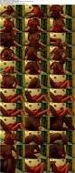 Alexia Rae - Webcam Hackers