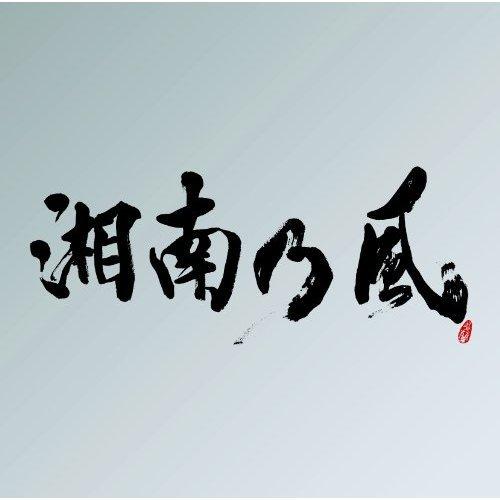 """湘南乃風 (Shōnan no Kaze) - 裏BEST""""銀""""盤 (2CD) (2011)"""