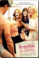 Despedida De Soltera [2013 DVDrip Comedia Latino][TB]